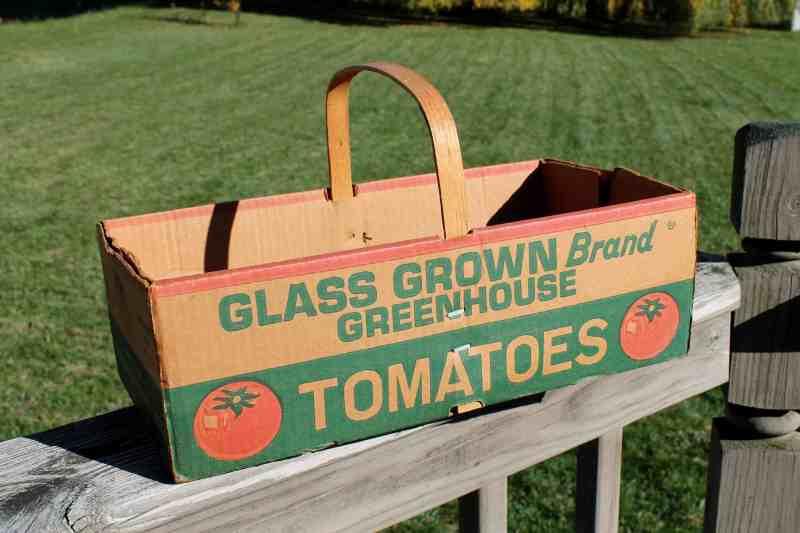 vintage tomato box adirondack girl @ heart