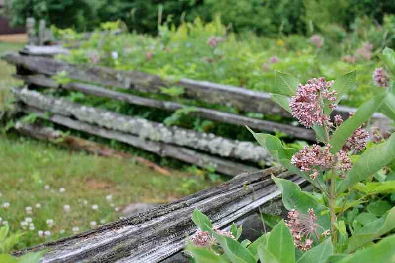 john brown property in Adirondacks