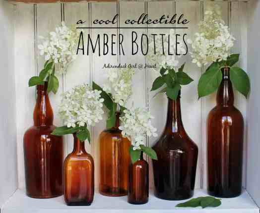 vintage and antique amber bottles on display with hydrangea