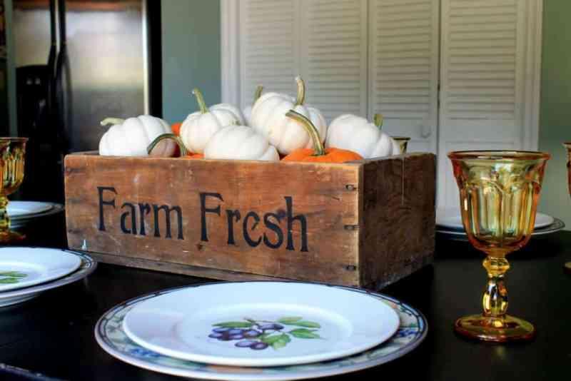 baby-boo-pumpkin-centerpiece-with-mikasa-garden-harves-t-plate-and-port-meirion-damson-plum-plate-2-1024x683