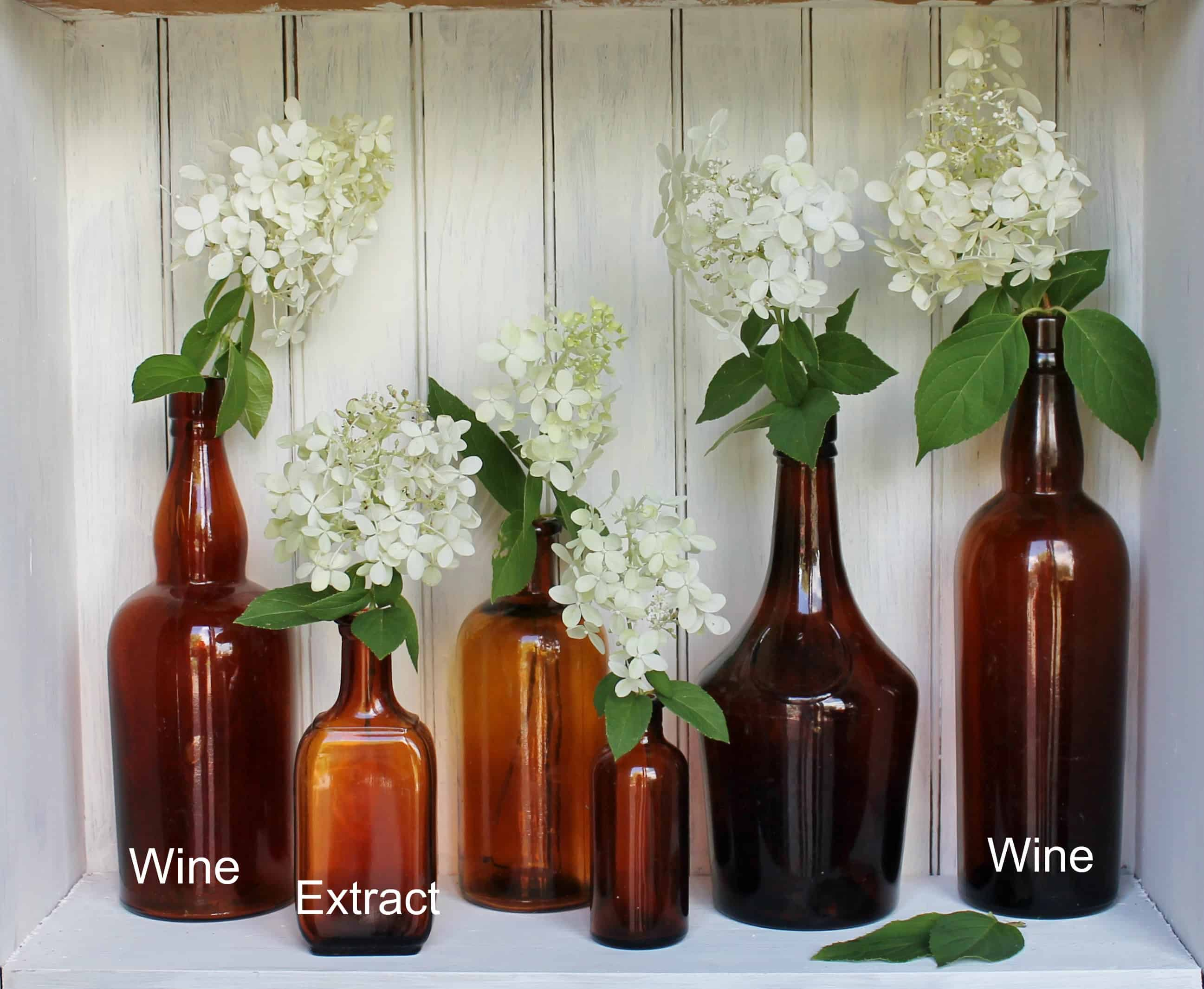 Vintage amber bottles with wines and extract