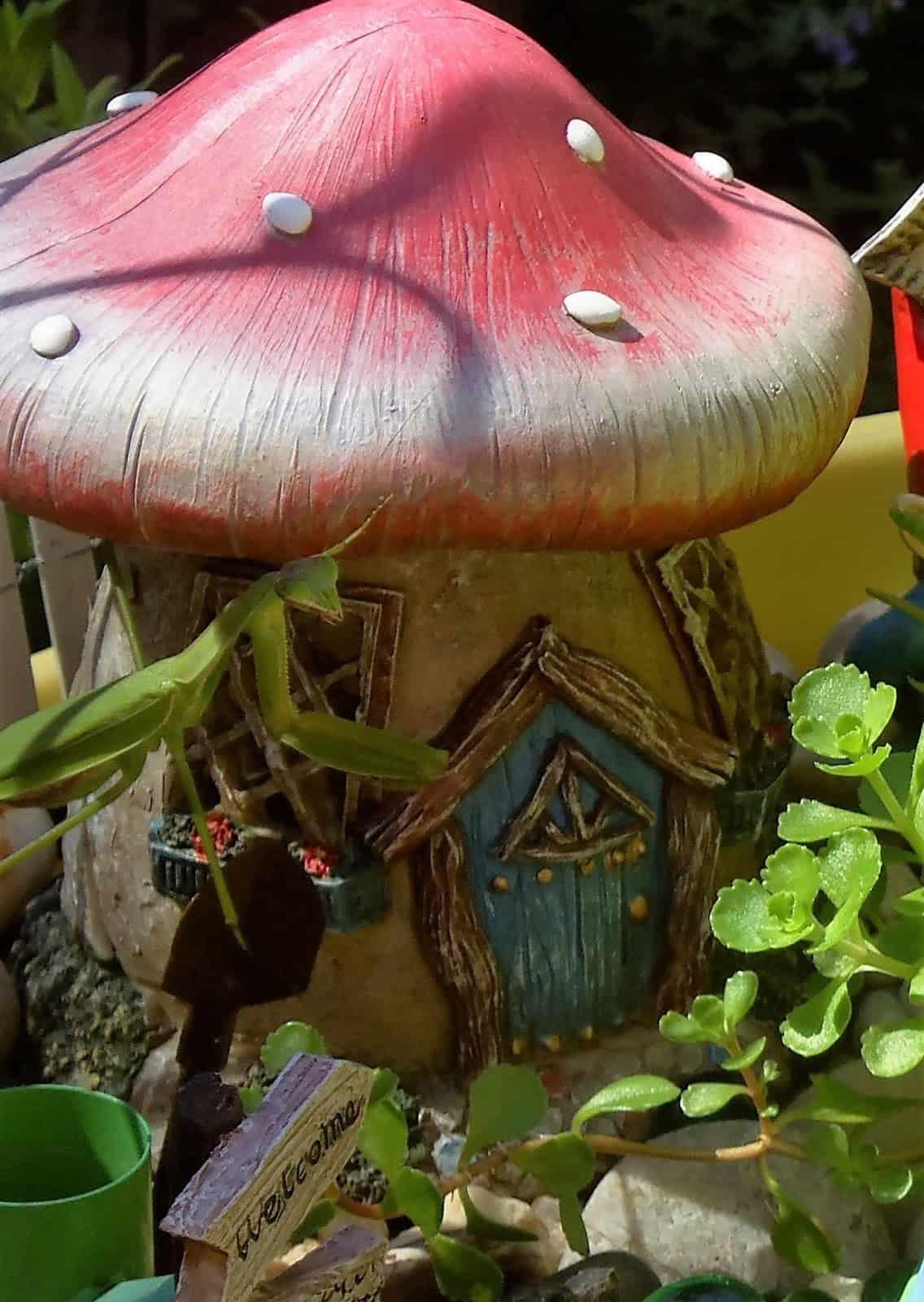 debbie-dabble-photo-of-praying-mantis-and-mushroom
