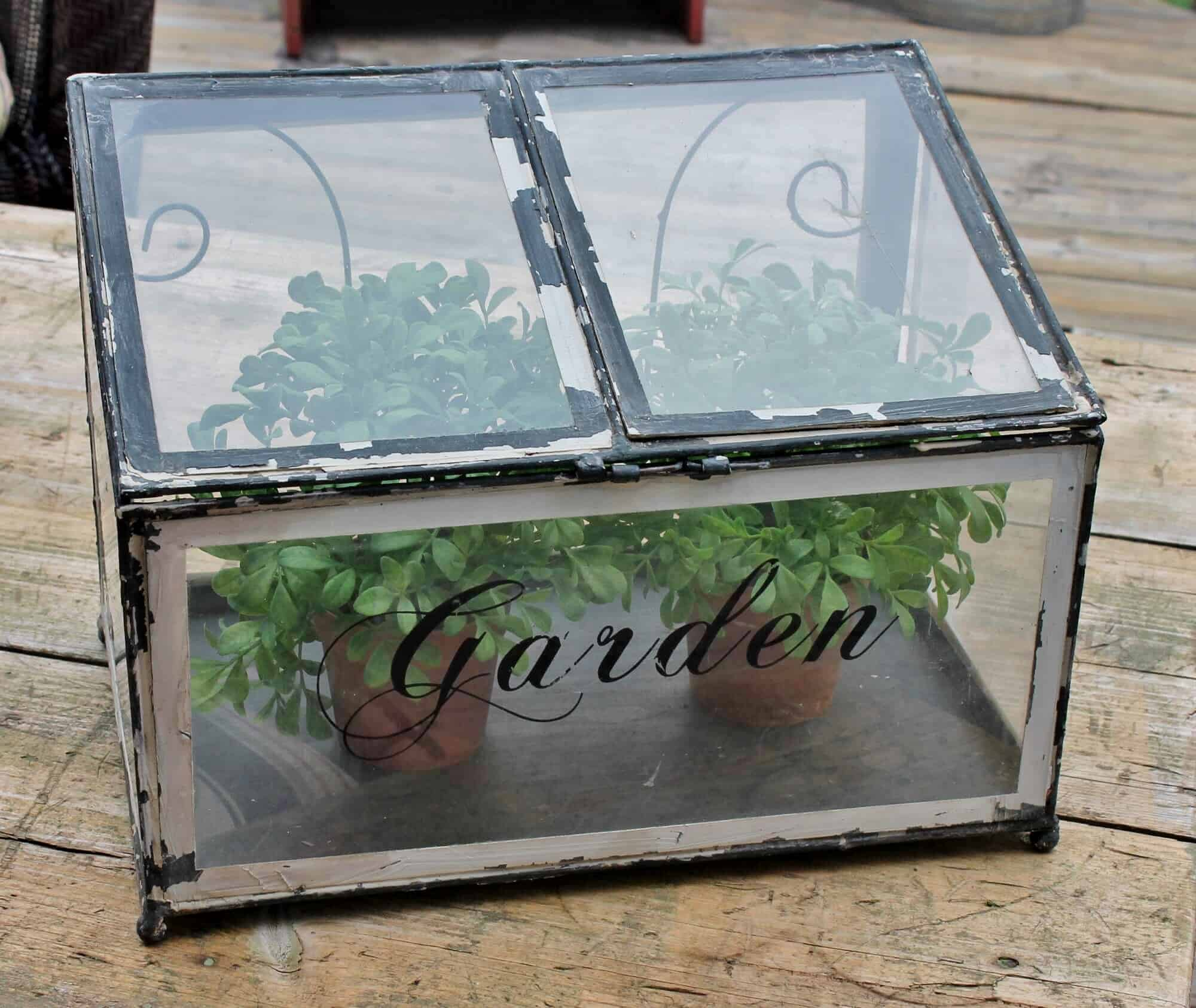 Table top green house