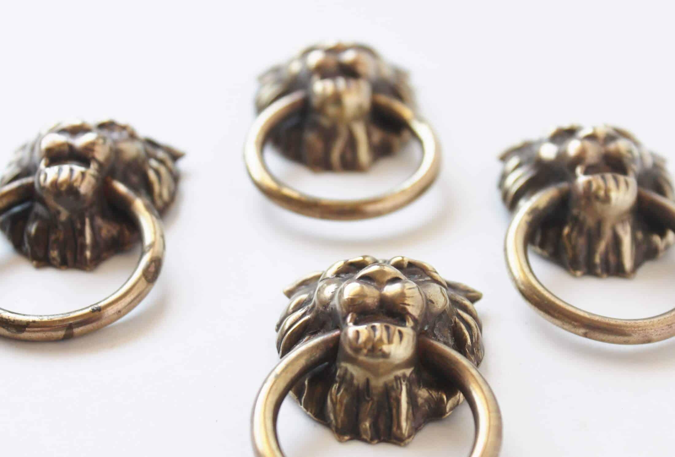 brass lion headed drawer pulls