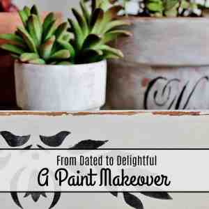 From Dated to Delightful: A Paint Makeover