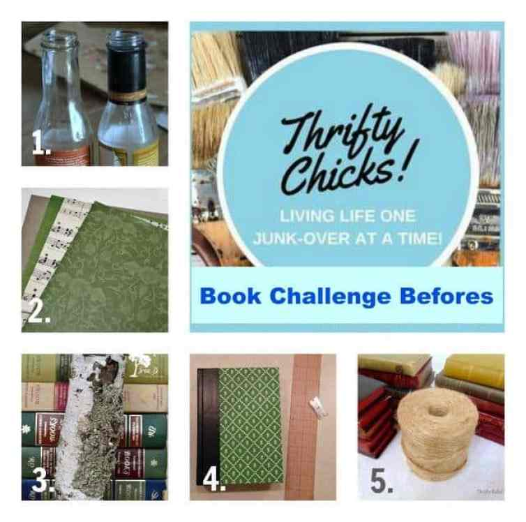 thrifty chick book project befores