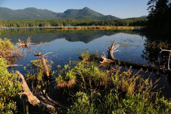 boreas-ponds-morning