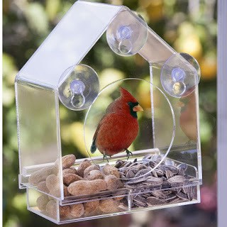 Nature-Anywhere Feeder