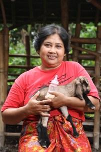 Sri kambing - Aditya Wardhana (5)