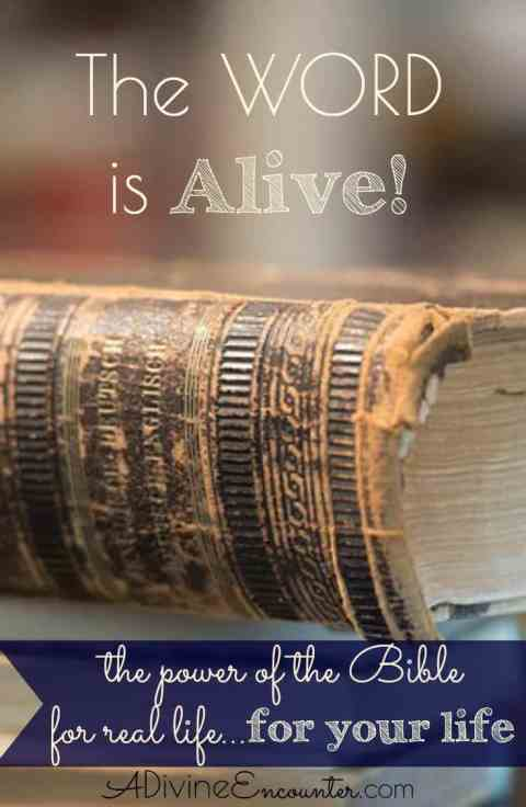 A personal look at the power of the Bible for real life, examining its authority as the very best text as taught by the very best Teacher, the Holy Spirit.