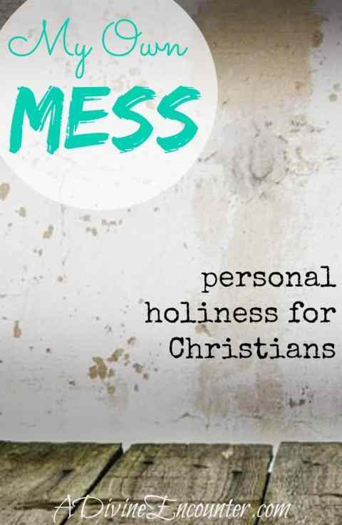 My Own Mess - personal holiness for Christians (A Divine Encounter)
