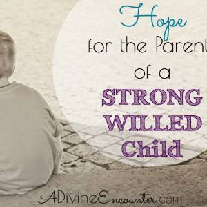 Hope for the Parents of a Strong Willed Child