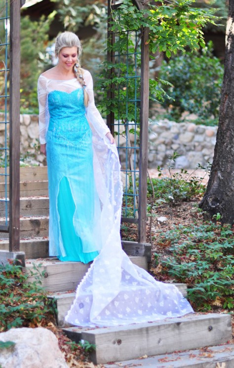 Frozen Elsa Snow Queen Halloween Costume