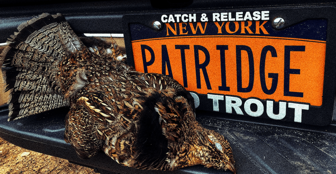 Adirondack-grouse-woodcock-hunting-north-country-outfitters-7