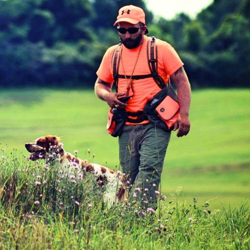 New-York-Hunting-Dog-NY-28