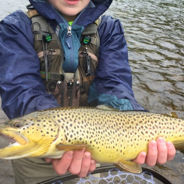 Trout-Brown-Fly-Fishing-Adirondack-New-York-NY-3
