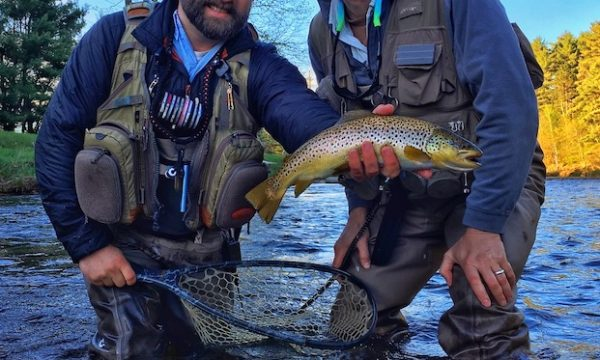 Trout-Brown-Fly-Fishing-Adirondack-New-York-NY-7