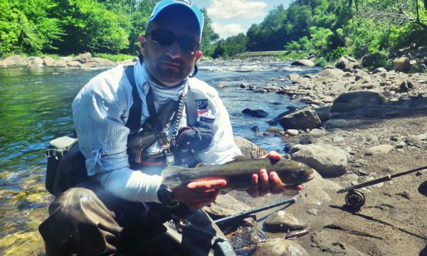 rainbow_trout_ausable