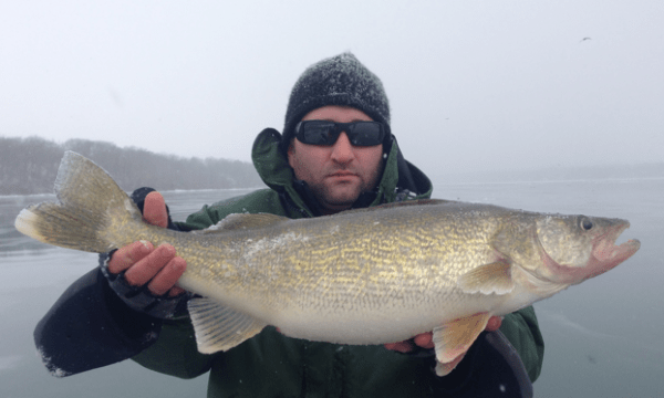 walleye_fishing_niagara_river