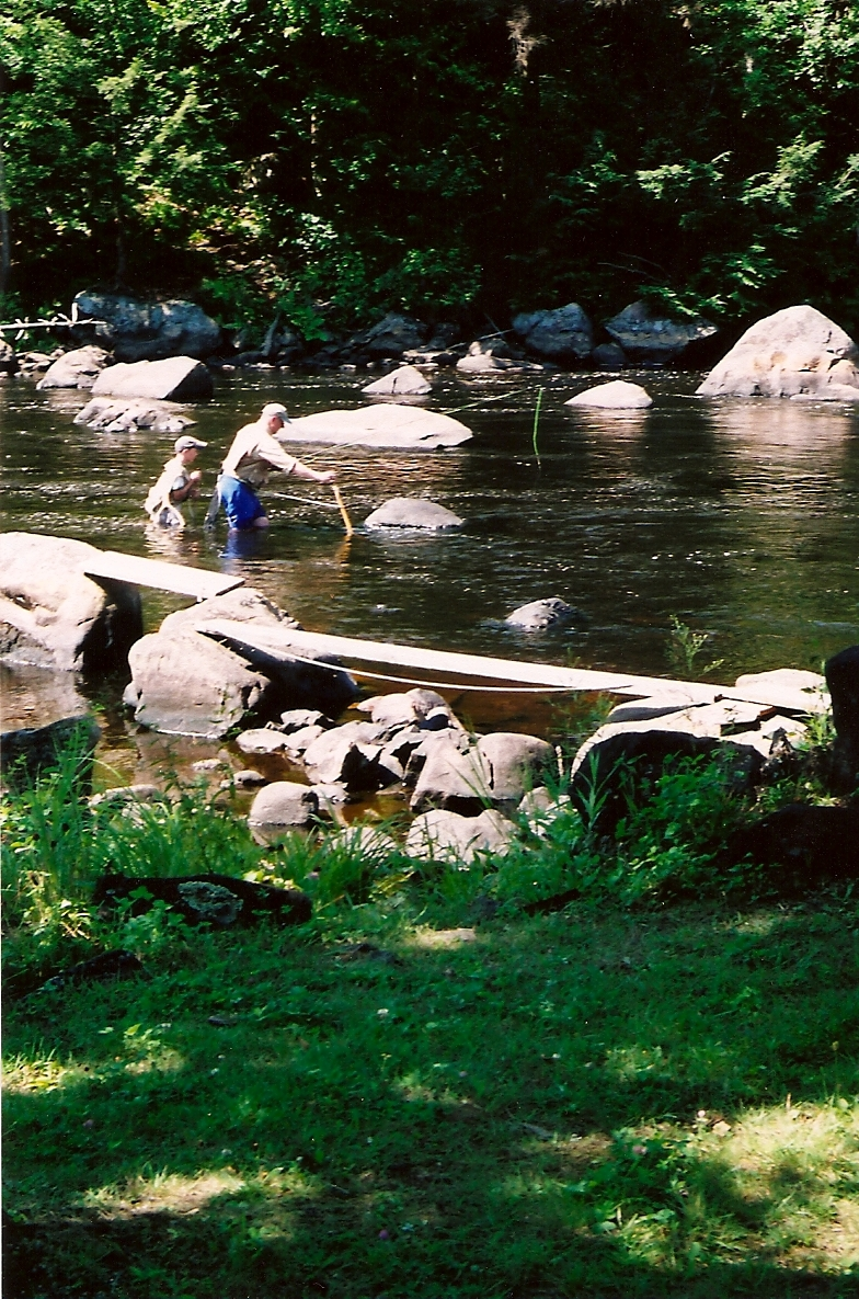 tink-fishing