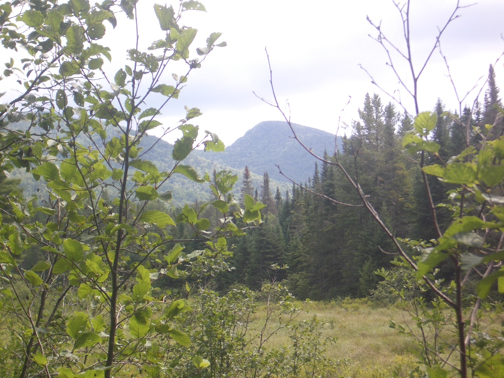 On the trail to John Pond,...