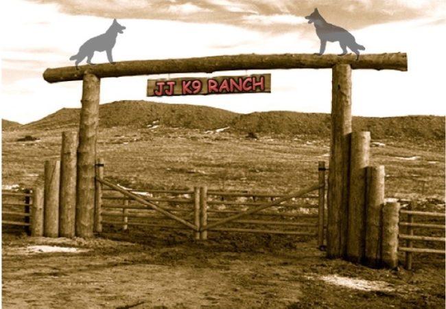 jj-k9-ranch-IMG_1257