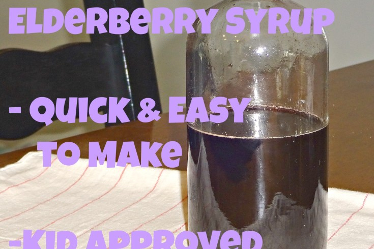 homemade elderberry syrup/ immunity booster