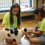 Senor with Pet Champions at Paul Jolly Center for Pet Adoptions