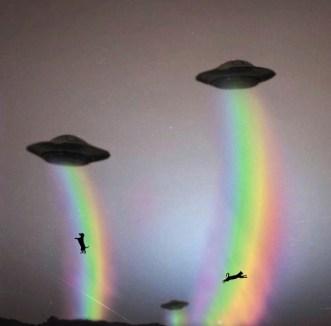 alien-abducting-dog-cat