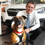 North Park Subaru Pet Star - Soltai