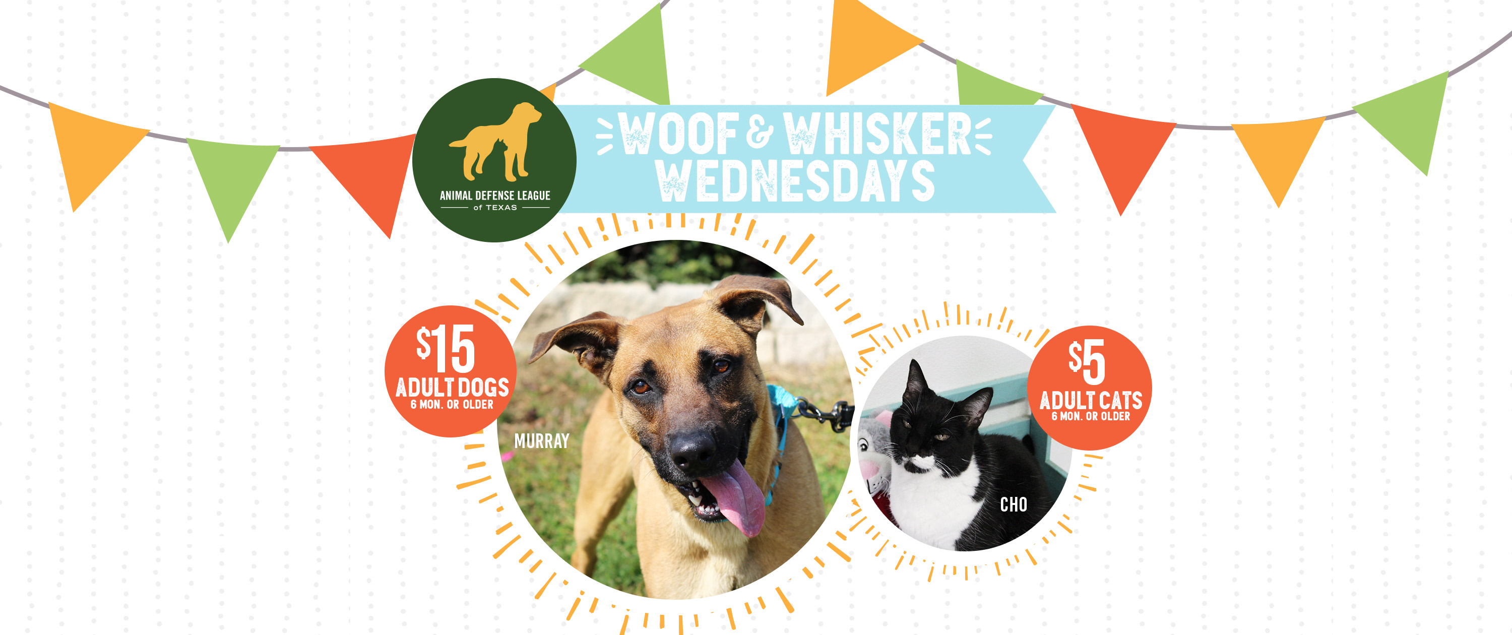 ADL's Woof and Whisker Wednesday