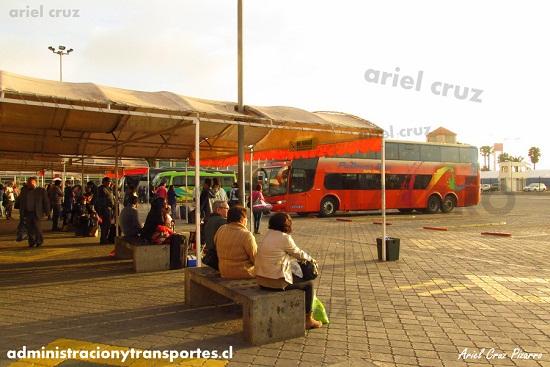 Buses en el Terminal de La Serena – Octubre 2015