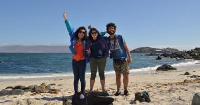 Playa y Amigos