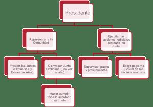 Funciones y obligaciones del Presidente