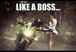 Ultimate Like a Boss Compilation 2015
