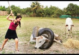 Top 10 Viral Videos 2017 Wow! Amazing Beautiful Girl Catching Freshwater Snake With Hand In Cambodia