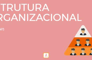 ESTRUTURA ORGANIZACIONAL – O QUE É?