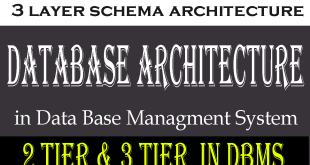 How does Database Architecture work in DBMS?