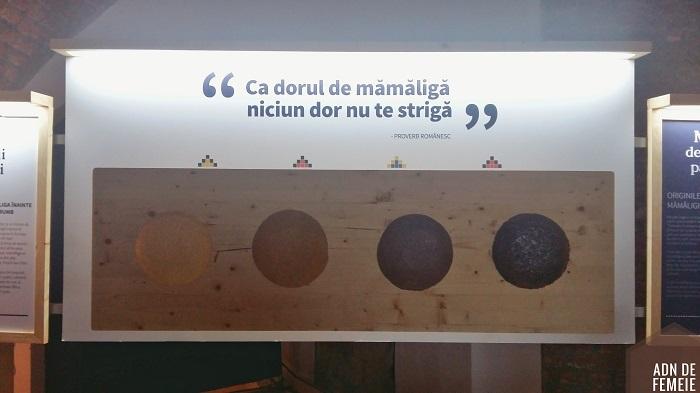 muzeul bucatelor ascunse din lidl