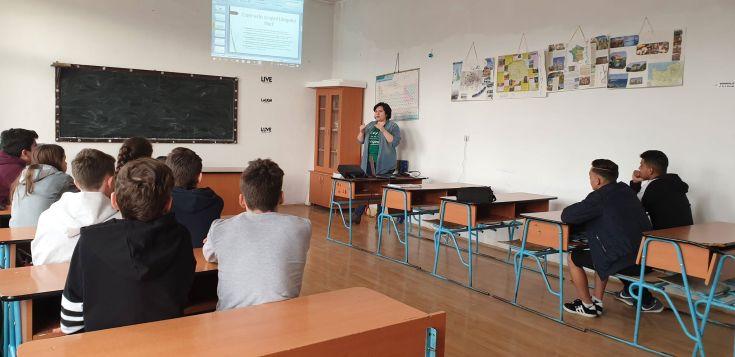 prezentare blogging