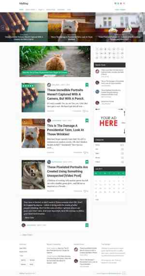 MyBlog-Theme-Ads-Ready-Wordpress-Theme-For-Blogs-12