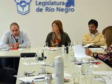 Comision-Planificacion-con-Secretario-Gesualdo