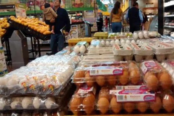 Precio del huevo sube hasta 75 pesos (14:30 h)