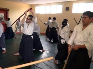 seminario aikido 2