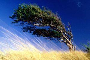 viento-fuerte