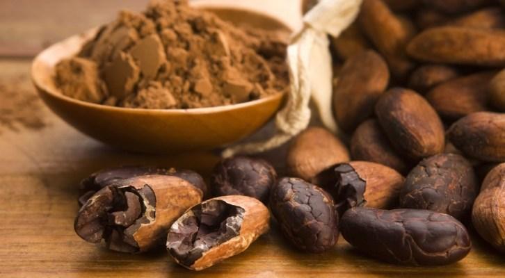 Cacao contiene propiedades anticancerígenas: IPN (18:00 h)