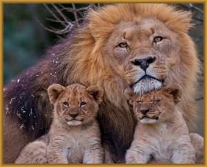 dia del padre leon