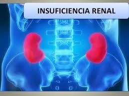Insuficiencia renal, una compleja y grave enfermedad (10:00 h)