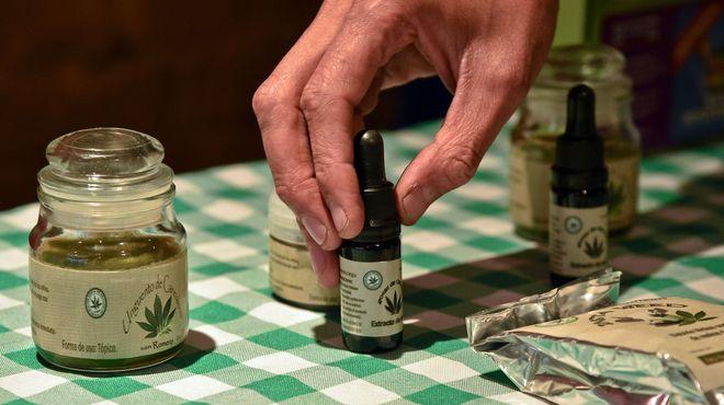 Listo reglamento para vender productos con mariguana en México: Cofepris (14:00 h)