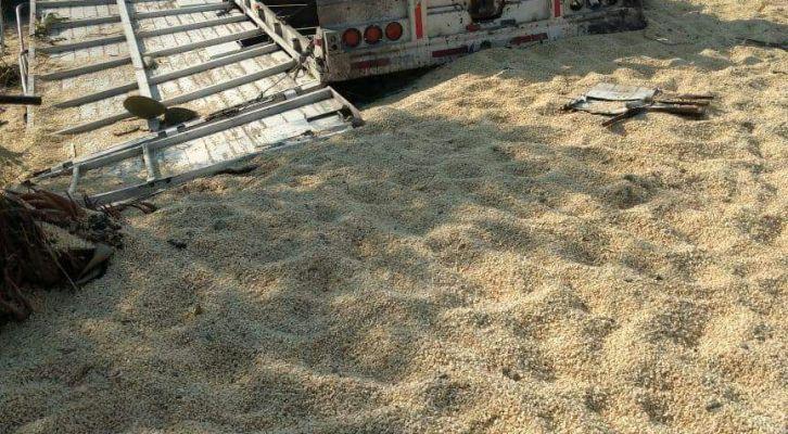 Muere chofer al volcar su tráiler cargado de arena en la autopista Cuacnopalan-Oaxaca (19:00 h)